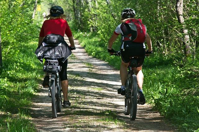 cyklistky v lese.jpg