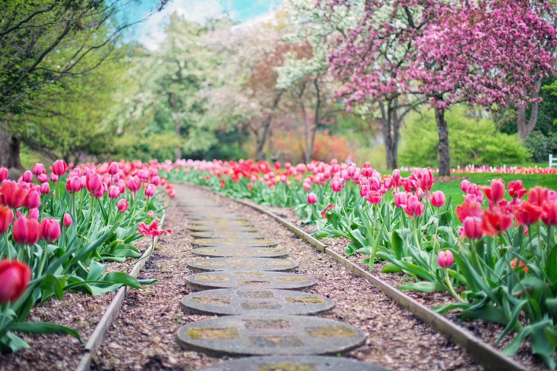 Přivítejte jaro u Vás doma featured image